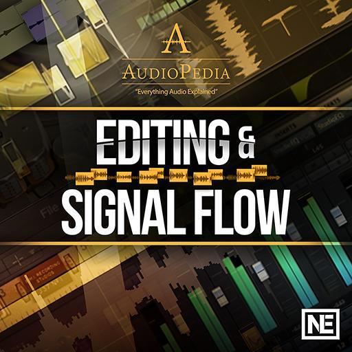 Editing and Signal Flow