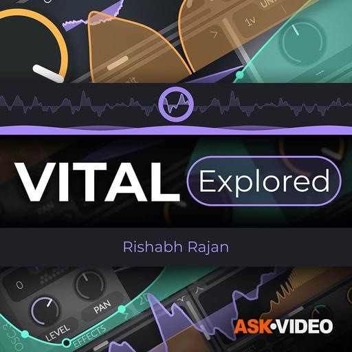 Vital 101: Vital Explored