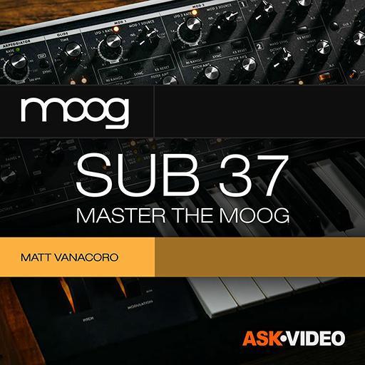 Master the Moog